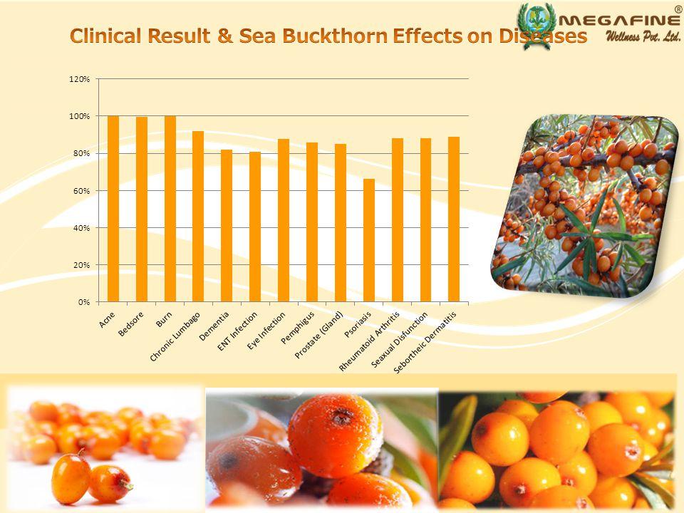 Sea Buckthorn helps build, restore and improve immune function.