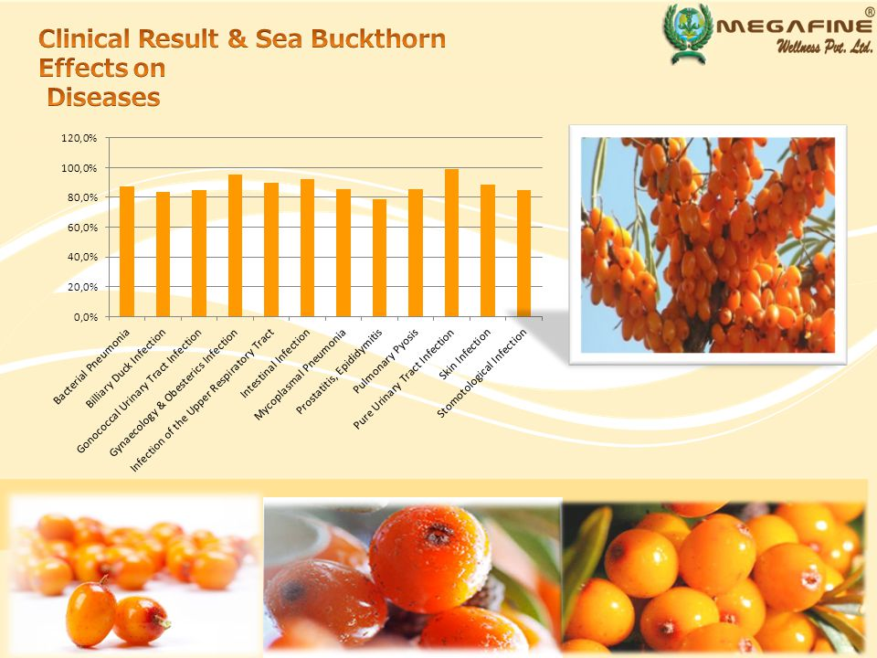 Sea Buckthorn oil has been traditionally used in relieving pain.