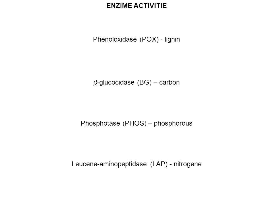 ENZIME ACTIVITIE Phenoloxidase (POX) - lignin  -glucocidase (BG) – carbon Phosphotase (PHOS) – phosphorous Leucene-aminopeptidase (LAP) - nitrogene