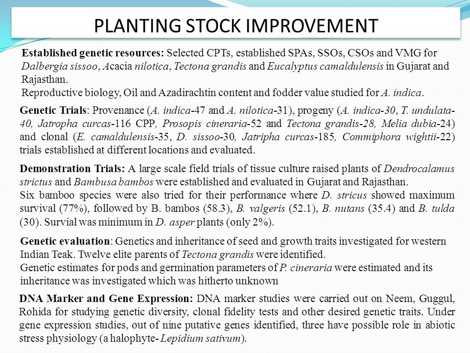 PLANTING STOCK IMPROVEMENT Genetic Trials: Provenance (A. indica-47 and A. nilotica-31), progeny (A. indica-30, T. undulata- 40, Jatropha curcas-116 C