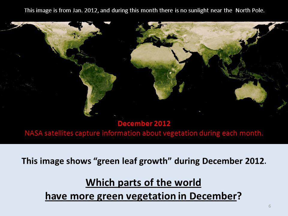 This image shows green leaf growth during December 2012.