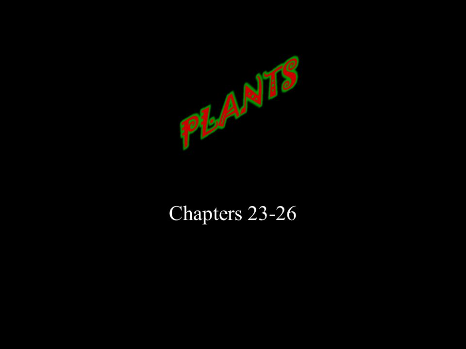 Chapters 23-26