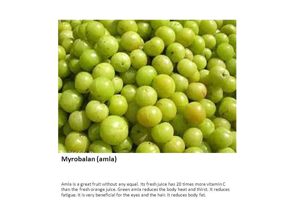 Myrobalan (amla) Amla is a great fruit without any equal.