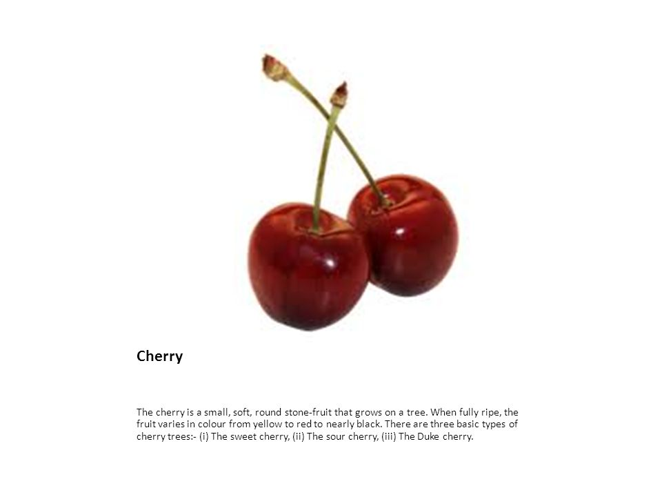 Cherry The cherry is a small, soft, round stone-fruit that grows on a tree.