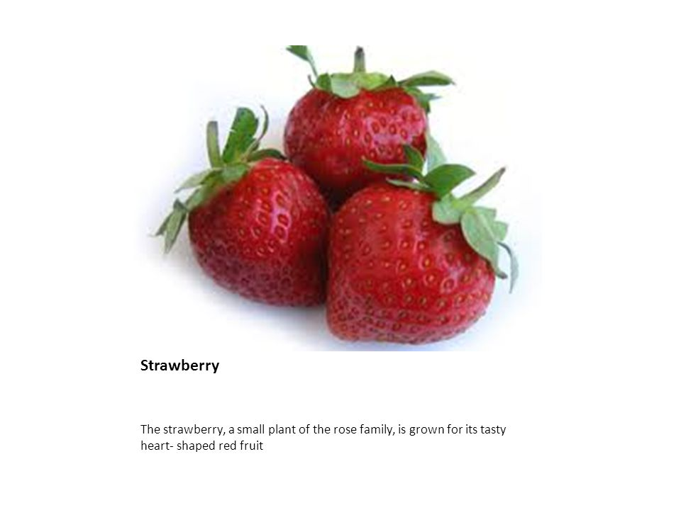 Strawberry The strawberry, a small plant of the rose family, is grown for its tasty heart- shaped red fruit