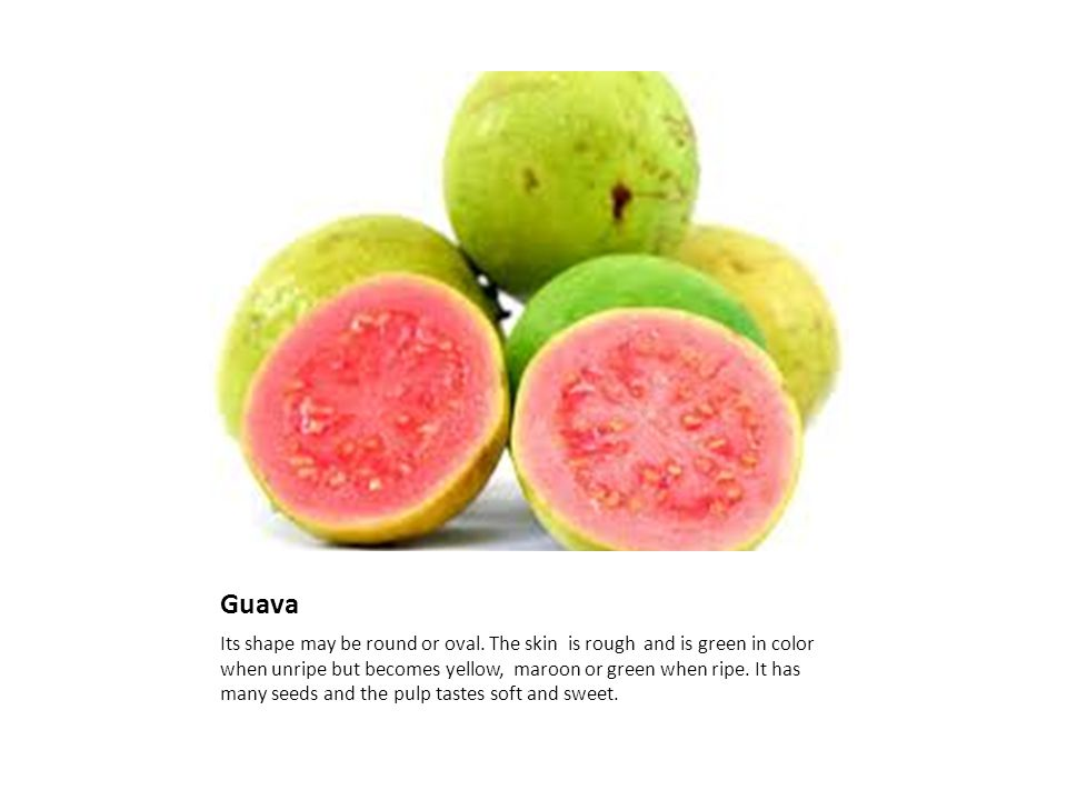 Guava Its shape may be round or oval.