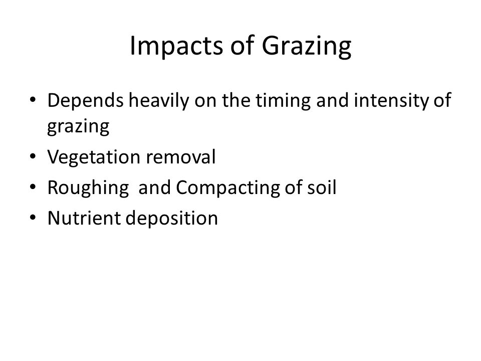 Impacts of Grazing Depends heavily on the timing and intensity of grazing Vegetation removal Roughing and Compacting of soil Nutrient deposition
