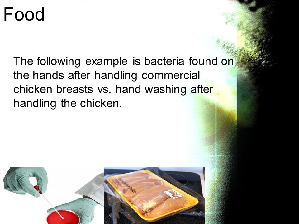Food The following example is bacteria found on the hands after handling commercial chicken breasts vs.