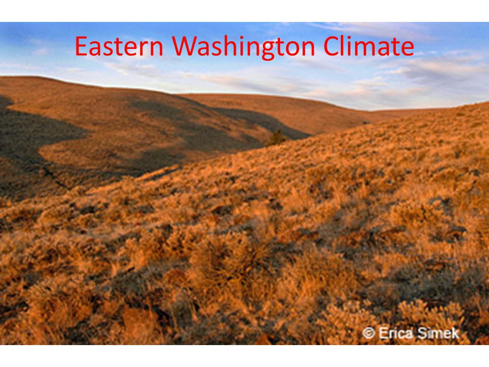 One of the four seasons we have in eastern Washington is summer now it is a lot hotter here in eastern Washington than in western Washington during the summer because west has a natural air conditioner called the pacific ocean now thanks to the cascades the cool ocean breeze doesn't each us so we get to bake in the summer all season long with temps up to the three digits!