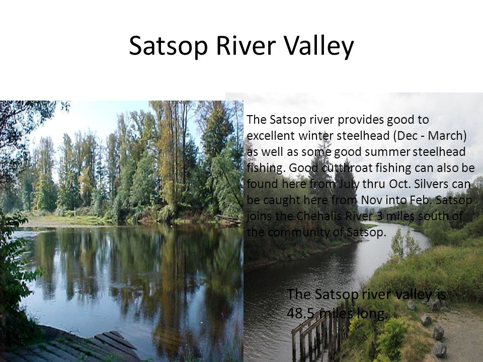 Cowlitz River Valley Fish in this river valley  Steelhead  Salmon 105 miles in length and has three major hydroelectric dams.