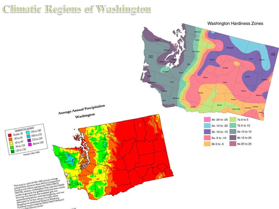 West coast marine climate is located in the lowlands of western Washington.