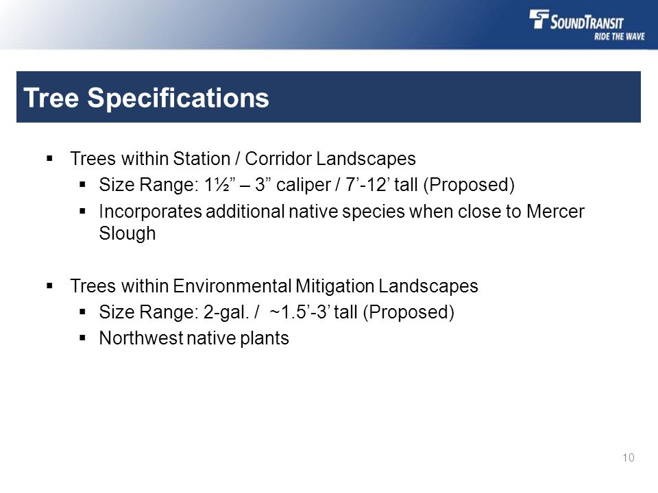 "Tree Specifications  Trees within Station / Corridor Landscapes  Size Range: 1½"" – 3"" caliper / 7'-12' tall (Proposed)  Incorporates additional nat"
