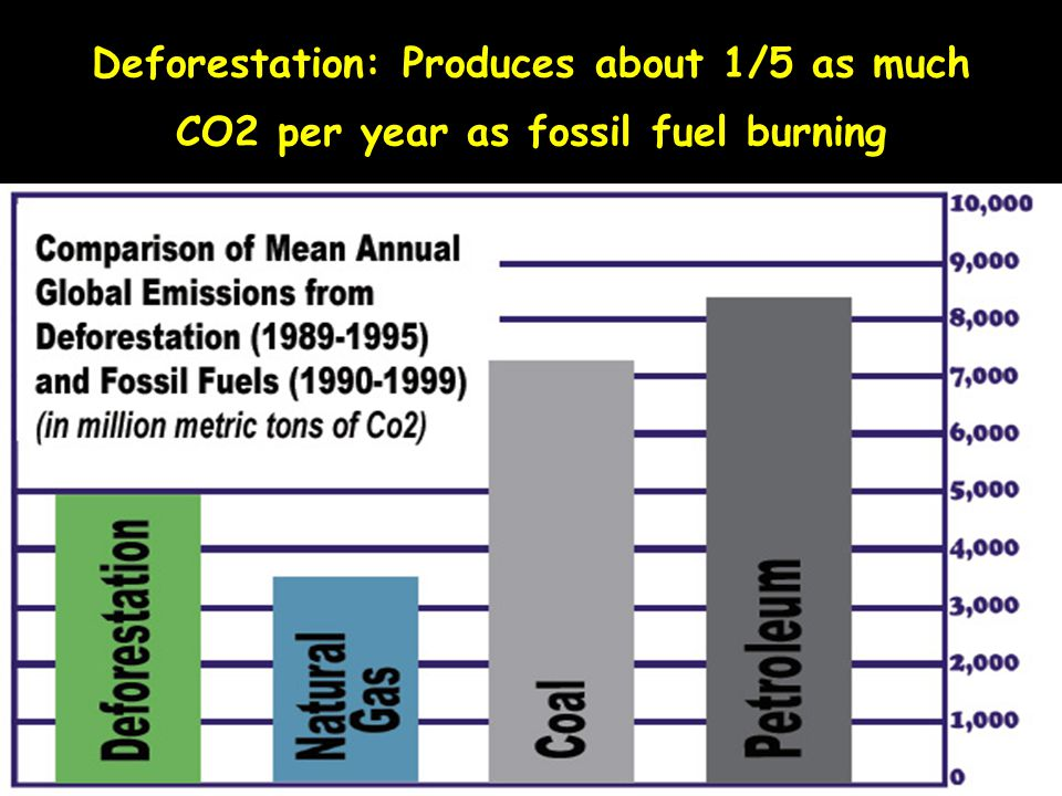 Deforestation: Produces about 1/5 as much CO2 per year as fossil fuel burning