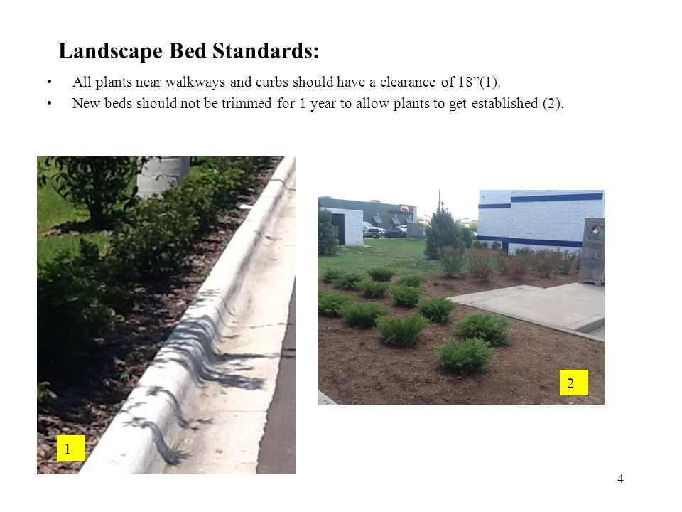 Landscape Bed Standards: All plants near walkways and curbs should have a clearance of 18 (1).