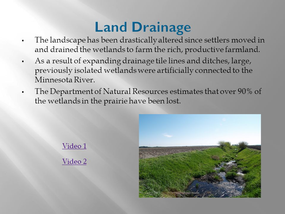  The landscape has been drastically altered since settlers moved in and drained the wetlands to farm the rich, productive farmland.