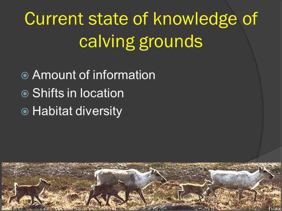 Current state of knowledge of calving grounds  Amount of information  Shifts in location  Habitat diversity