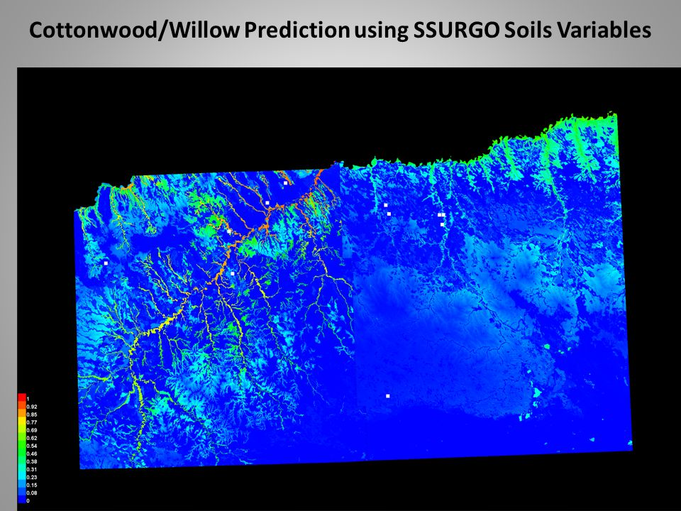 Cottonwood/Willow Prediction using SSURGO Soils Variables