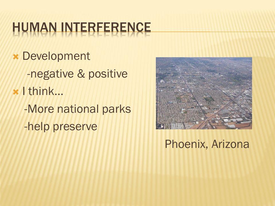  Development -negative & positive  I think… -More national parks -help preserve Phoenix, Arizona