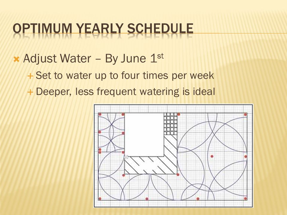  Adjust Water – By June 1 st  Set to water up to four times per week  Deeper, less frequent watering is ideal