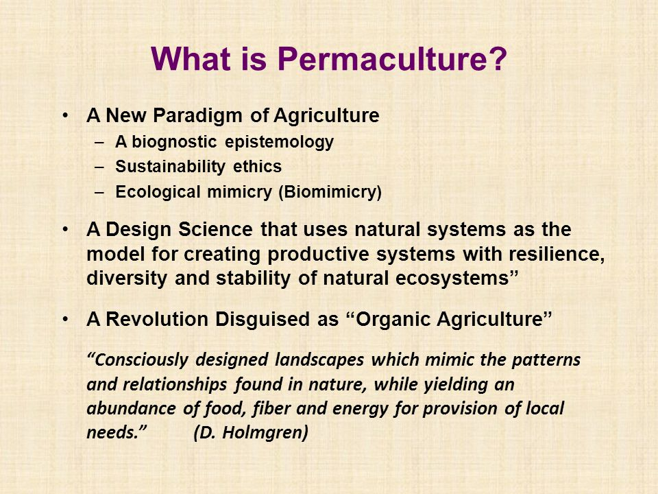 What is Permaculture? A New Paradigm of Agriculture –A biognostic epistemology –Sustainability ethics –Ecological mimicry (Biomimicry) A Design Scienc