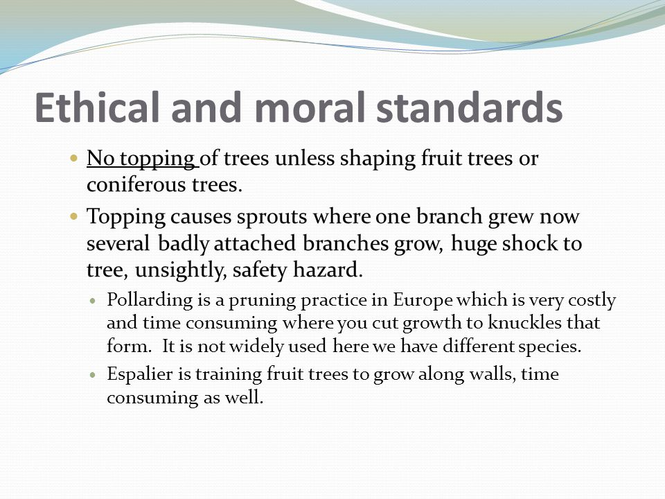 Ethical and moral standards No topping of trees unless shaping fruit trees or coniferous trees. Topping causes sprouts where one branch grew now sever