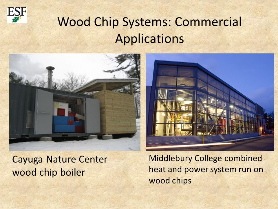 Cayuga Nature Center wood chip boiler Middlebury College combined heat and power system run on wood chips Wood Chip Systems: Commercial Applications