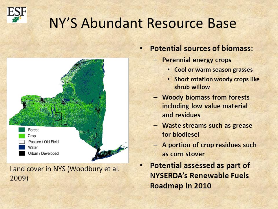 NY'S Abundant Resource Base Potential sources of biomass: – Perennial energy crops Cool or warm season grasses Short rotation woody crops like shrub willow – Woody biomass from forests including low value material and residues – Waste streams such as grease for biodiesel – A portion of crop residues such as corn stover Potential assessed as part of NYSERDA's Renewable Fuels Roadmap in 2010 Land cover in NYS (Woodbury et al.