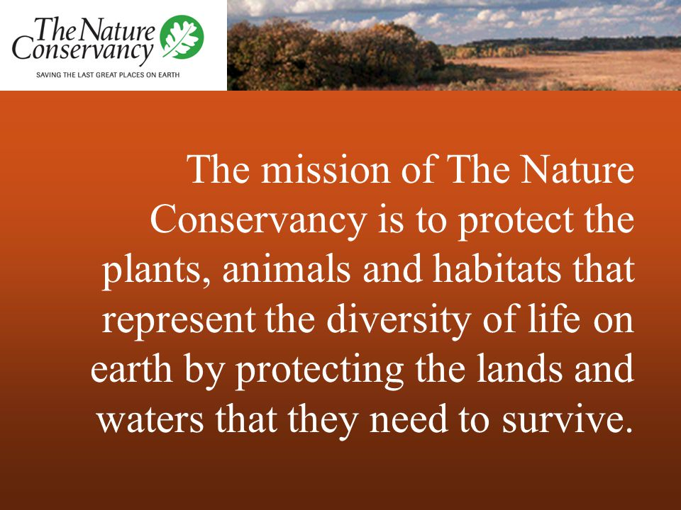 The mission of The Nature Conservancy is to protect the plants, animals and habitats that represent the diversity of life on earth by protecting the l