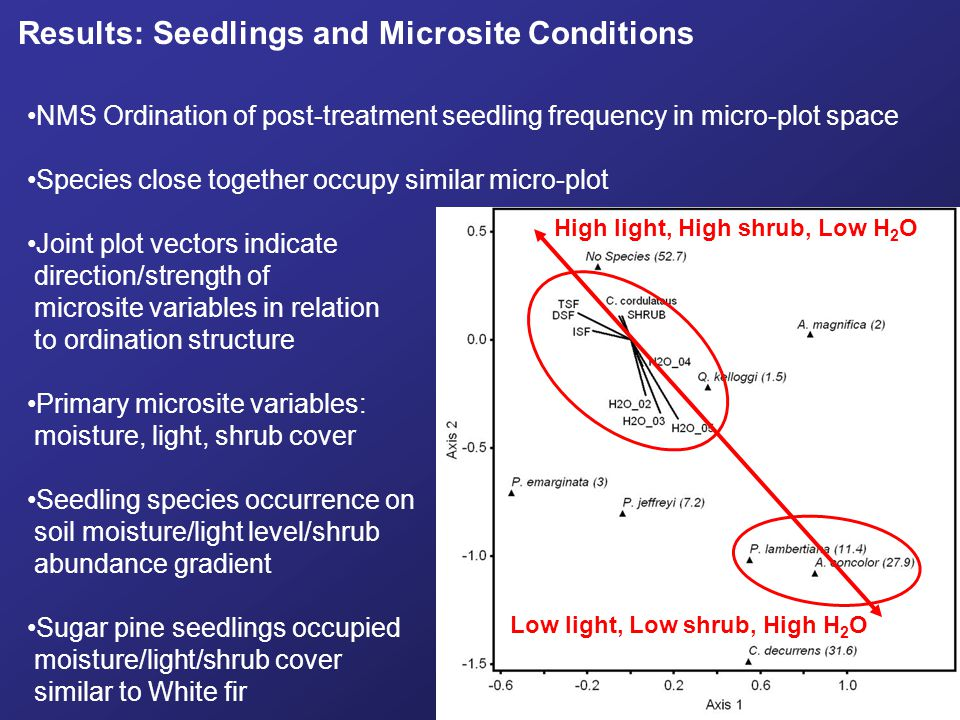 Results: Seedlings and Microsite Conditions NMS Ordination of post-treatment seedling frequency in micro-plot space Species close together occupy simi