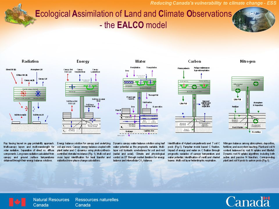 Reducing Canada s vulnerability to climate change - ESS E cological A ssimilation of L and and C limate O bservations - the EALCO model