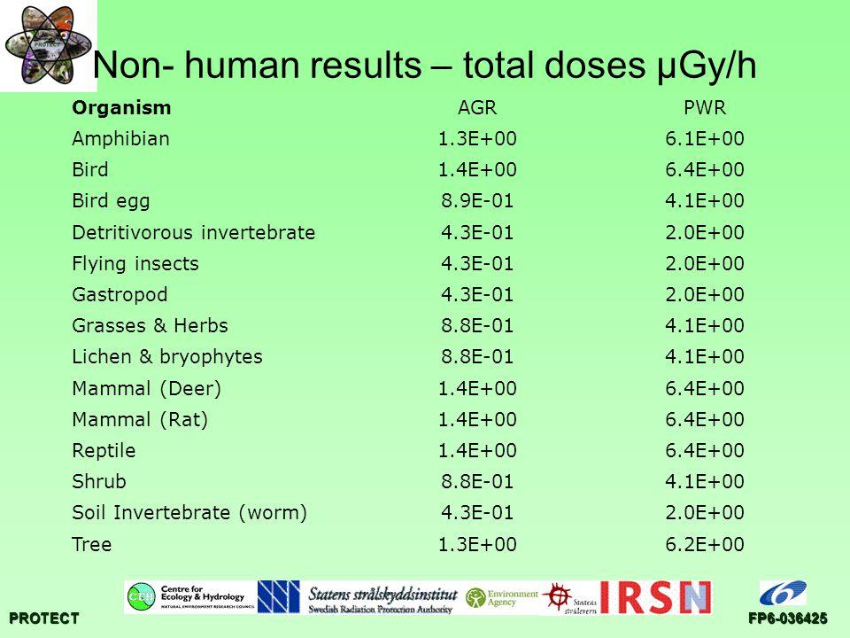 PROTECTFP6-036425 Non- human results – total doses µGy/h OrganismAGRPWR Amphibian1.3E+006.1E+00 Bird1.4E+006.4E+00 Bird egg8.9E-014.1E+00 Detritivorous invertebrate4.3E-012.0E+00 Flying insects4.3E-012.0E+00 Gastropod4.3E-012.0E+00 Grasses & Herbs8.8E-014.1E+00 Lichen & bryophytes8.8E-014.1E+00 Mammal (Deer)1.4E+006.4E+00 Mammal (Rat)1.4E+006.4E+00 Reptile1.4E+006.4E+00 Shrub8.8E-014.1E+00 Soil Invertebrate (worm)4.3E-012.0E+00 Tree1.3E+006.2E+00