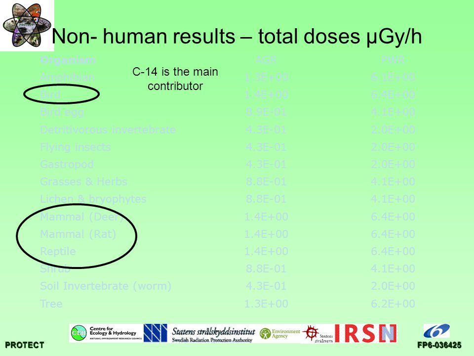 PROTECTFP6-036425 Non- human results – total doses µGy/h OrganismAGRPWR Amphibian1.3E+006.1E+00 Bird1.4E+006.4E+00 Bird egg8.9E-014.1E+00 Detritivorous invertebrate4.3E-012.0E+00 Flying insects4.3E-012.0E+00 Gastropod4.3E-012.0E+00 Grasses & Herbs8.8E-014.1E+00 Lichen & bryophytes8.8E-014.1E+00 Mammal (Deer)1.4E+006.4E+00 Mammal (Rat)1.4E+006.4E+00 Reptile1.4E+006.4E+00 Shrub8.8E-014.1E+00 Soil Invertebrate (worm)4.3E-012.0E+00 Tree1.3E+006.2E+00 C-14 is the main contributor