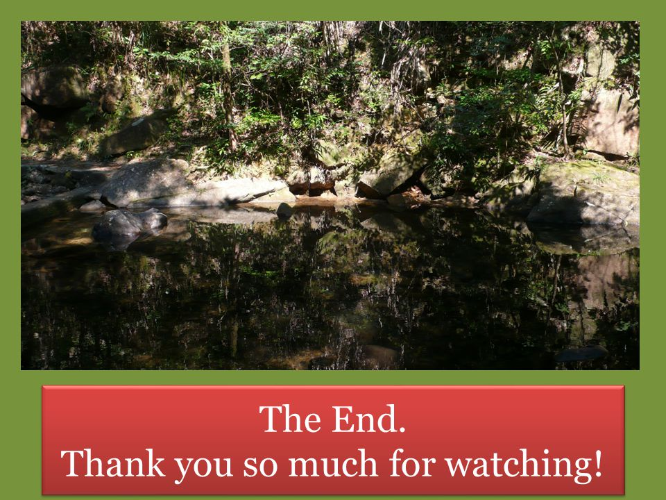 The End. Thank you so much for watching! The End. Thank you so much for watching!