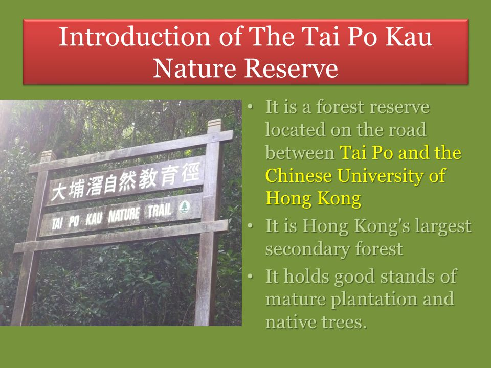 It is a forest reserve located on the road between Tai Po and the Chinese University of Hong Kong It is a forest reserve located on the road between T