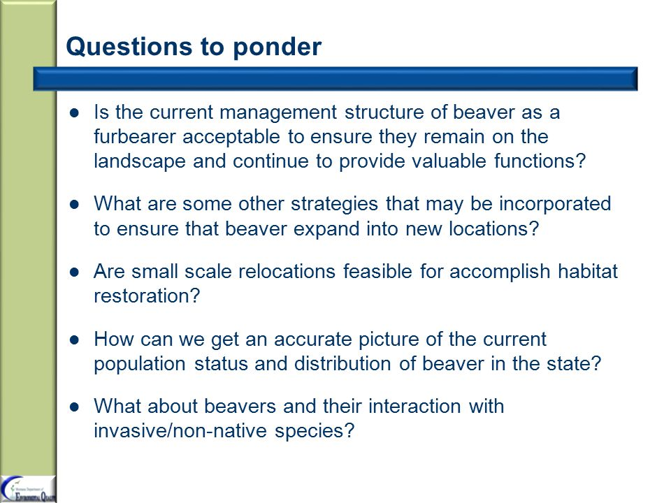 Questions to ponder Is the current management structure of beaver as a furbearer acceptable to ensure they remain on the landscape and continue to provide valuable functions.