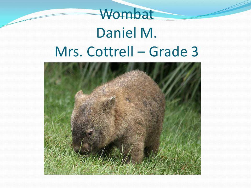 Wombat Daniel M. Mrs. Cottrell – Grade 3