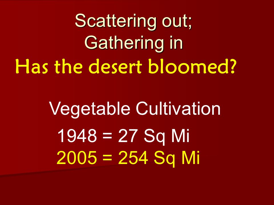 Scattering out; Gathering in Has the desert bloomed.