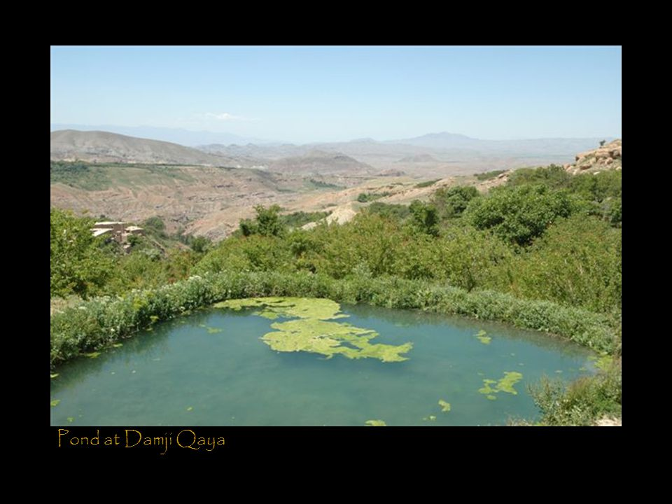 Pond at Damji Qaya