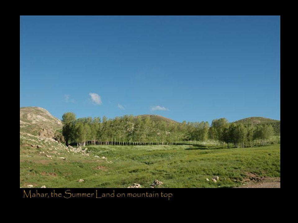 Mahar, the Summer Land on mountain top