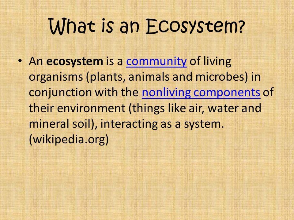 What is an Ecosystem? An ecosystem is a community of living organisms (plants, animals and microbes) in conjunction with the nonliving components of t