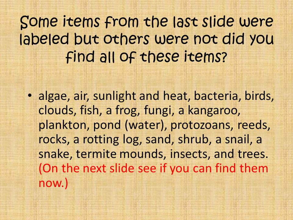 Some items from the last slide were labeled but others were not did you find all of these items.