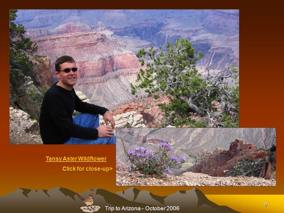 Trip to Arizona - October 2006 10