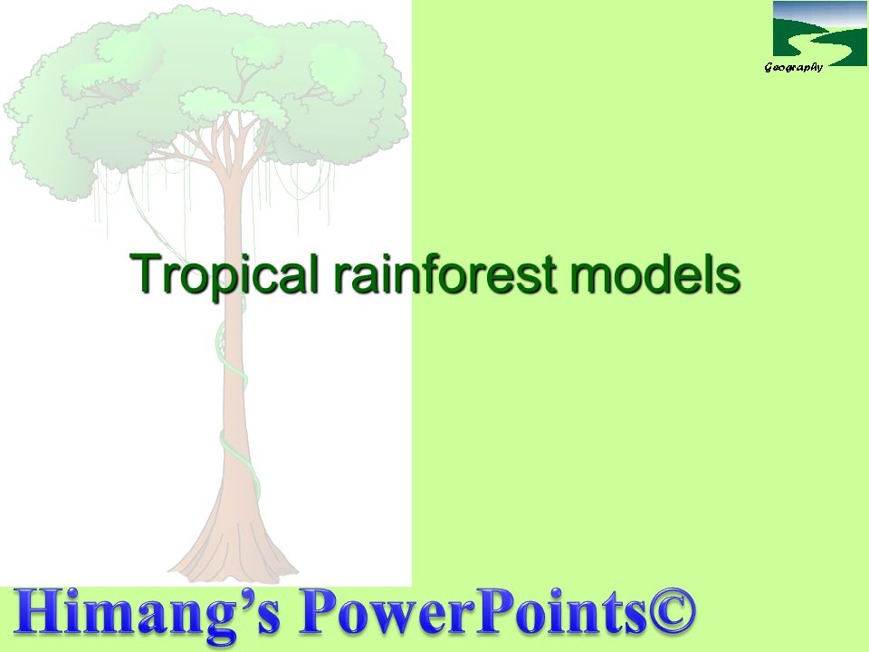Rainforest plants And the enormous the number of different species of plants grow in rainforests, with many species occurring only in one particular region.