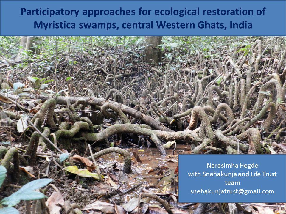 Narasimha Hegde with Snehakunja and Life Trust team snehakunjatrust@gmail.com Participatory approaches for ecological restoration of Myristica swamps,