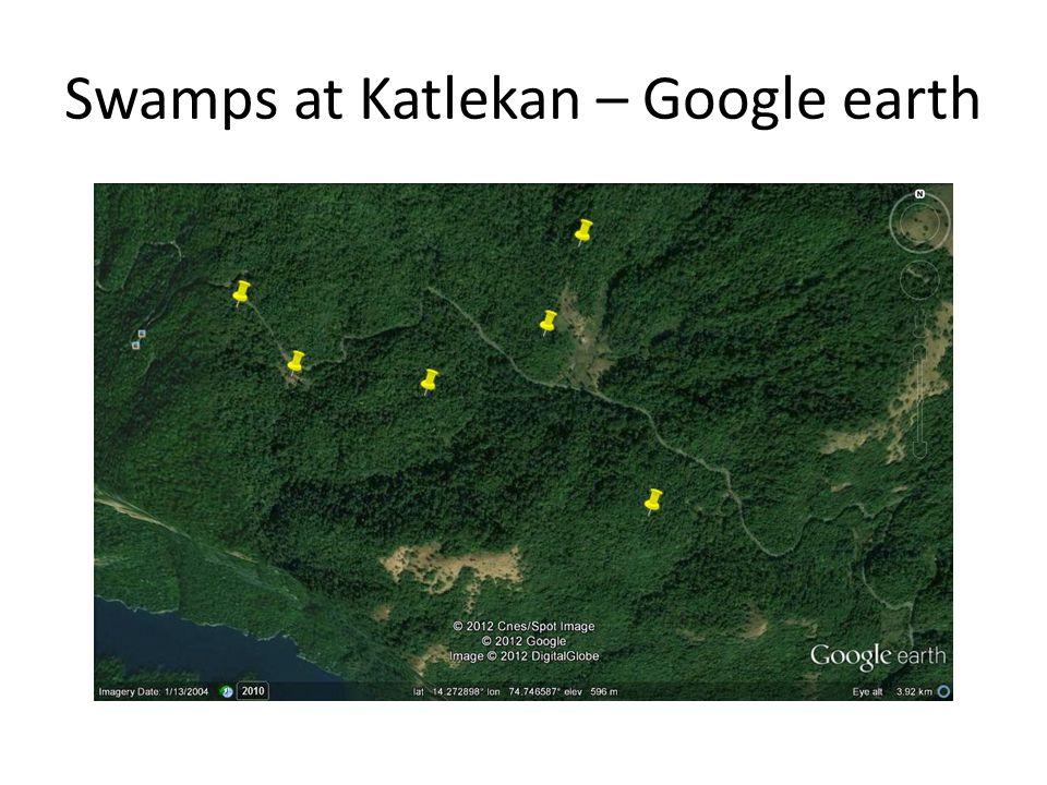 Swamps at Katlekan – Google earth