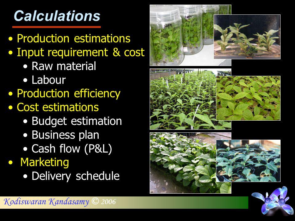 Kodiswaran Kandasamy © 2006 Production estimations Input requirement & cost Raw material Labour Production efficiency Cost estimations Budget estimati