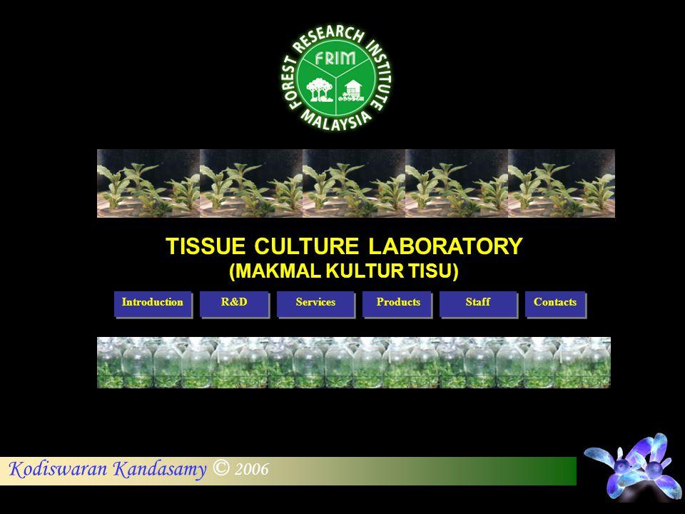 Kodiswaran Kandasamy © 2006 Introduction R&D Services Staff Products Contacts TISSUE CULTURE LABORATORY (MAKMAL KULTUR TISU)