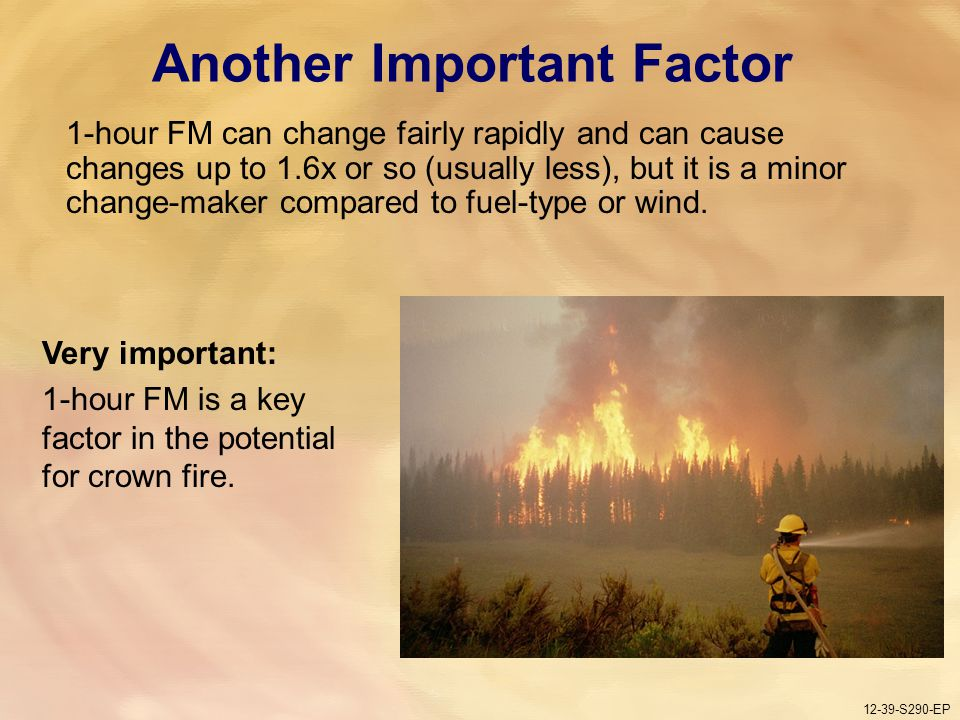 12-39-S290-EP Gauging Fire Behavior and Guiding Fireline Decisions Unit 12 Part 1 12-39-S290-EP Another Important Factor 1-hour FM can change fairly rapidly and can cause changes up to 1.6x or so (usually less), but it is a minor change-maker compared to fuel-type or wind.