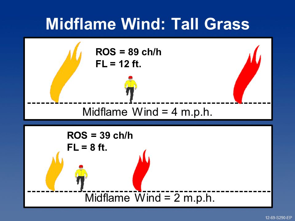 12-69-S290-EP Gauging Fire Behavior and Guiding Fireline Decisions Unit 12 Part 1 Midflame Wind: Tall Grass Midflame Wind = 4 m.p.h.