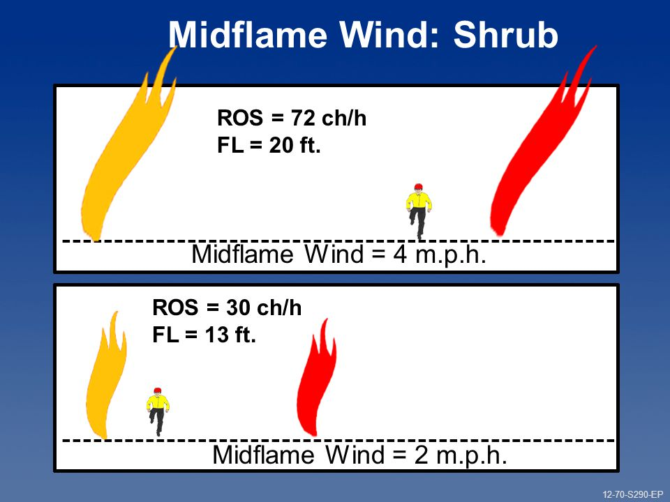 12-70-S290-EP Gauging Fire Behavior and Guiding Fireline Decisions Unit 12 Part 1 Midflame Wind: Shrub Midflame Wind = 4 m.p.h.